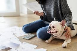 Mulher a gerir dívidas com cão ao lado. Fim das moratórias.